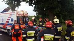 Sztutowo. Samochód uderzył w drzewo. 2 osoby w szpitalu - 20.06.2016