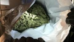 39-latek zatrzymany z kilogramem narkotyków wartych 50 tys. złotych