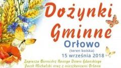 Skaner i Top Girls gwiazdami Dożynek Gminnych w Orłowie.