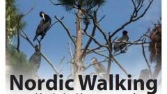 VII Jesienny Rajd Nordic Walking. Zapraszamy do Kątów Rybackich