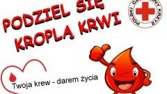 Przedświąteczny pobór krwi w Nowym Dworze Gdańskim