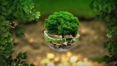 Powiat nowodworski: XV Powiatowy Konkurs Wiedzy Ekologicznej