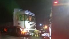 Trutnowy: Ciężarówka uderzyła w drzewo.