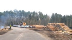 Rozpoczęła się wycinka drzew na miejscu Przekopu Mierzei Wiślanej. Zobacz pierwsze zdjęcia