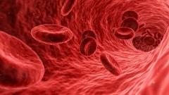 Oddając krew - ratujesz czyjeś życie! Światowy Dzień Krwiodawcy