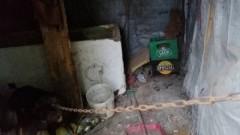 Wychudzone i skrajnie zaniedbane psy. Interwencja nowodworskich policjantów i Inspektorów OTOZ Animals.