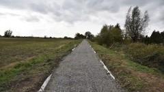 Nowy Dwór Gdański/ Tuja: Trwa budowa ścieżki rowerowej.