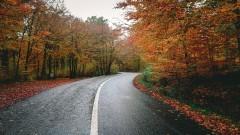 Policja apeluje do kierowców – uważajcie na drodze jesienią!