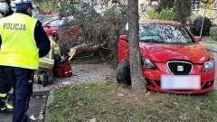 Tczew. Autem ściął drzewo, które spadło na przechodnia.