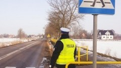 """Nowy Dwór Gdański. Dzisiaj policyjne działania """"Pieszy""""."""