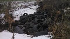 Gmina Stegna. Kto wyrzuca śmieci do rowów melioracyjnych?