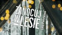 """Nadleśnictwo Elbląg. Rusza program """"Zanocuj w lesie""""."""