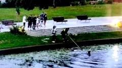 Nowy Dwór Gdański. Wskoczyła do rzeki na ratunek tonącym w reklamówce kociętom.
