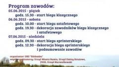 PUCHAR NAJMŁODSZYCH W BIEGU NA ORIENTACJĘ. IMPREZA SPORTOWA. SZTUTOWO - 5. 6. 7.06.2015