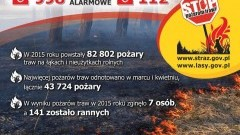 Co 6 minut strażacy wyjeżdżali do akcji gaśniczych. STOP pożarom traw! - 29.03.2016