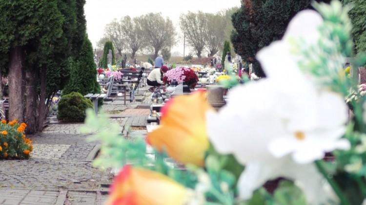 Niewielki wzrost cen zniczy i kwiatów. Ostatnie przygotowania do 1 listopada.