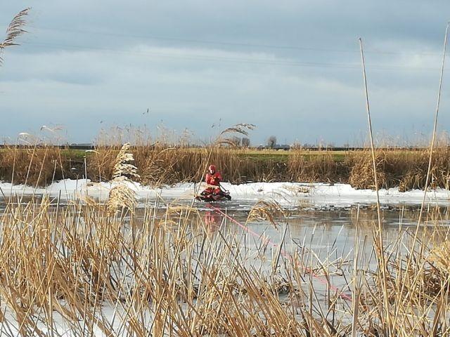 Strażacy uratowali tonącego psa w Orłowie - raport nowodworskich służb mundurowych.