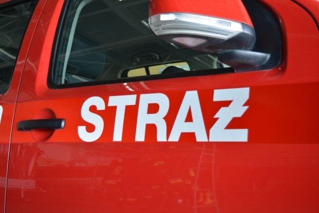 Pożar budynku mieszkalnego w Stegnie, aż 8 interwencji związanych z usunięciem gniazd owadów. - raport nowodworskich służb mundurowych