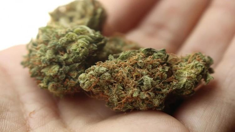 Nastolatek zatrzymany za posiadanie narkotyków.