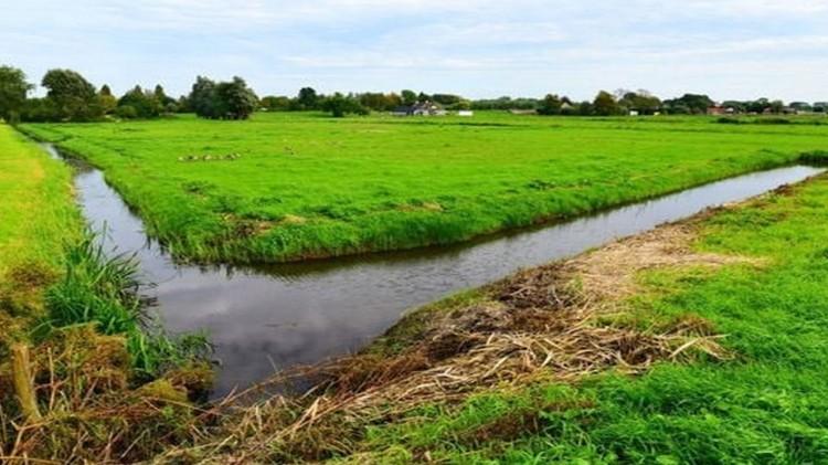 Regionalny Zarząd Gospodarki Wodnej zaprasza na spotkanie w sprawie melioracji polderu Stegna.