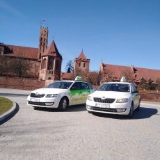 Hallo Taxi Malbork zatrudni kierowców kat B