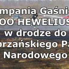 Kompania Gaśnicza z województwa pomorskiego wyruszyła na ratunek do…